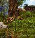 achtergrond nr