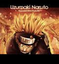 Naruto Shippuuden (21)
