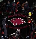 all akatsuki