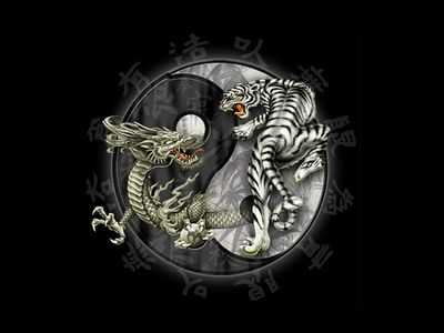 Dragons   Tiger Dragon Yin Yang