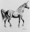 Boris Vallejo   Unicorn (1991)(1)