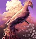 phoenixb