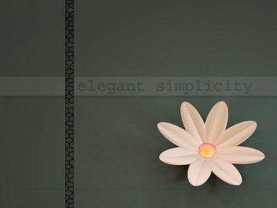 elegantsimplicity1