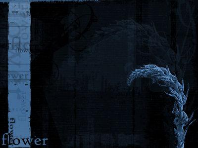 flowerv22