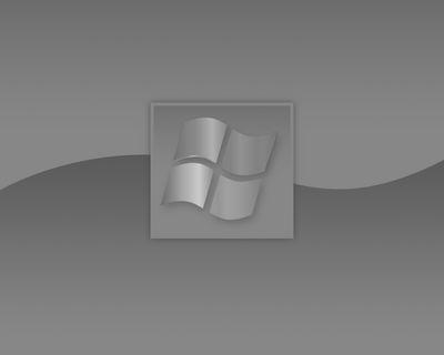 windows xp (grey) metal i