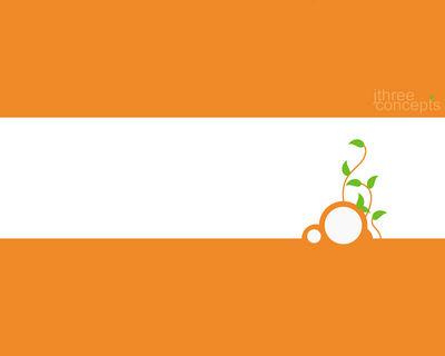 orangeconcept1