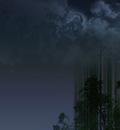 bamboo night1