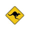kangeroo1