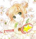 anime beautiful girl14364 card captor sakura flowers kinomoto sakura